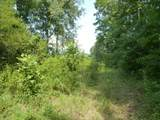 Lot #16A Trillium Heights - Photo 10