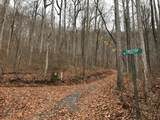 Lot 20 Shooting Creek Trail - Photo 11