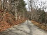 Lot 20 Shooting Creek Trail - Photo 3
