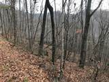 Lot 20 Shooting Creek Trail - Photo 4