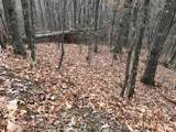 Lot 20 Shooting Creek Trail - Photo 6