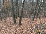 Lot 20 Shooting Creek Trail - Photo 8