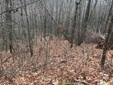 Lot 20 Shooting Creek Trail - Photo 9