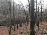 20 Sams Branch View - Photo 1