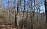 Lot 20 Enchanted Ridge - Photo 12