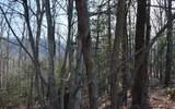 Lot 20 Enchanted Ridge - Photo 15