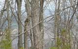 Lot 28 Deer Valley - Photo 1