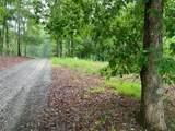 11 Paw Paw Trail - Photo 6