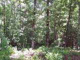 Lot #101 River Mountain Rd - Photo 6