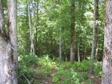 Lot #101 River Mountain Rd - Photo 7