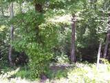 Lot #101 River Mountain Rd - Photo 9