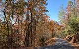 Lot 49 Fires Creek Cove - Photo 16