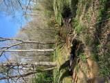 Lot 5 Bell Creek Estates - Photo 26