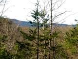 Lots 4&5 Whiskey Mountain - Photo 9