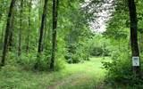 Lot 3 Whisper Woods - Photo 1