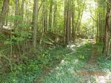 TBD Martins Creek Rd - Photo 1