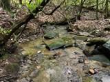 50 Acres Greasy Creek - Photo 1