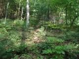 TBD View Ridge Trail - Photo 1
