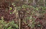Lot 57 Hidden River - Photo 1