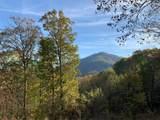 2.16 Mountain Ivy Lane - Photo 1