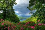 TBD Lakeside Trail - Photo 16