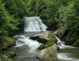 TBD Lakeside Trail - Photo 19