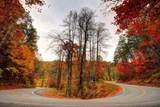 TBD Old Lodge Road - Photo 24