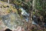 802 Shepherds Creek Road - Photo 19