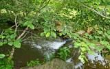 278 Owl Creek - Photo 26