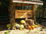 331 Vineyard Creek Way - Photo 14
