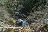 802 Shepherds Creek Road - Photo 17