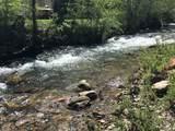 100 Lazy Bear Trail - Photo 10