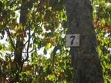 Lot 7&7A Bergan Moore Rd - Photo 4