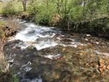 100 Lazy Bear Trail - Photo 5
