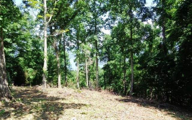 Lot 77 Eagles View Cir, HAYESVILLE, NC 28904 (MLS #129218) :: Old Town Brokers