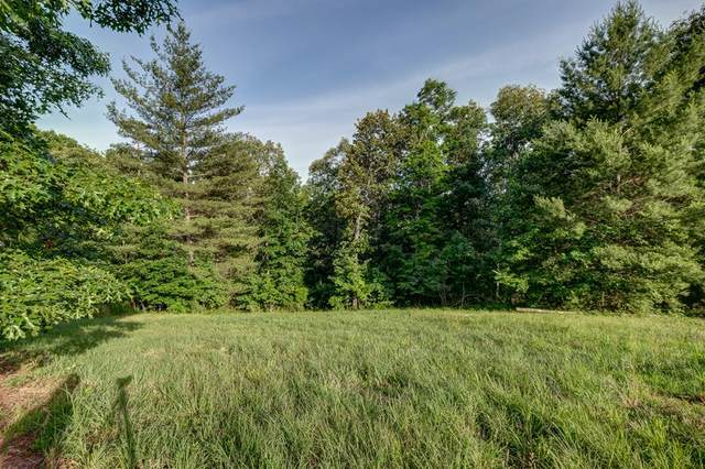 9-12/1 Skyland Trail/John Laurel, MURPHY, NC 28906 (MLS #129364) :: Old Town Brokers