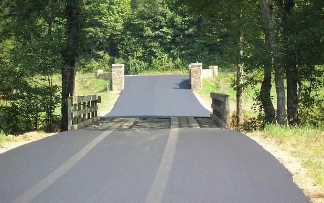 Lot 41 Brasstown Trails, WARNE, NC 28904 (MLS #129458) :: Old Town Brokers