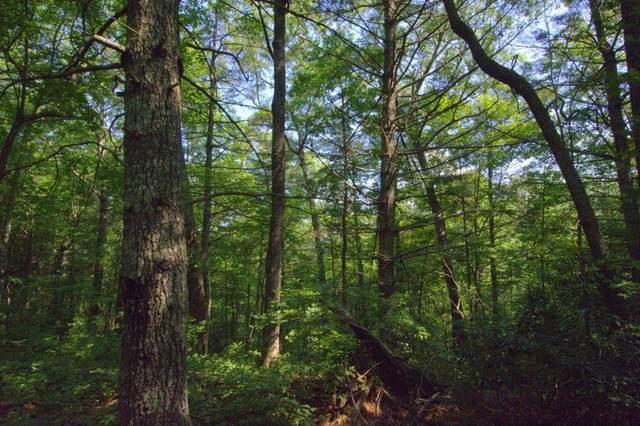 L48 Snowbird Trail, ROBBINSVILLE, NC 28771 (MLS #129692) :: Old Town Brokers