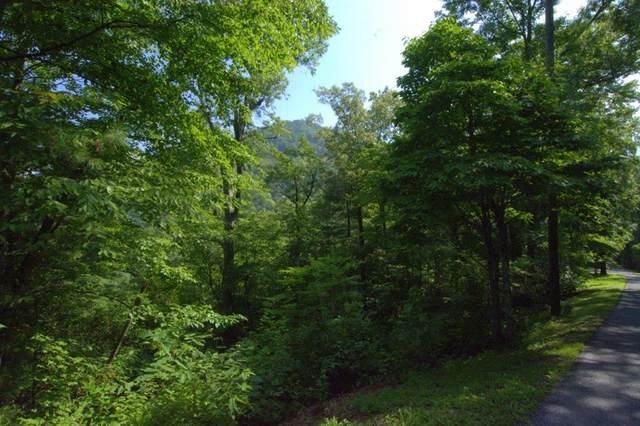 00 Black Bear Trail, ROBBINSVILLE, NC 28771 (MLS #129693) :: Old Town Brokers