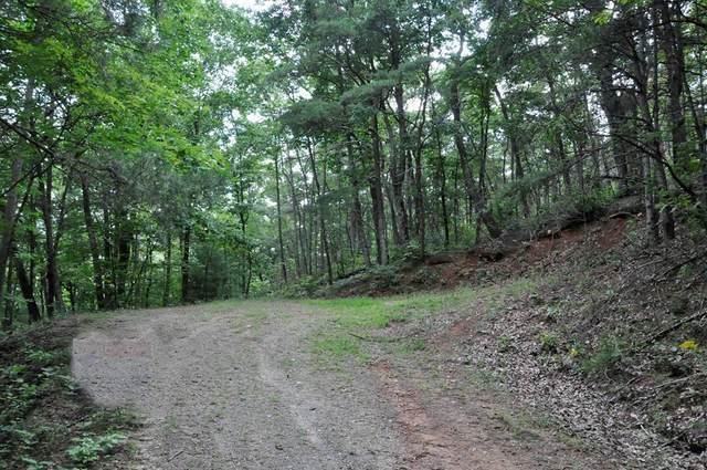 Lot 24 High View Road, MURPHY, NC 28906 (MLS #129914) :: Old Town Brokers