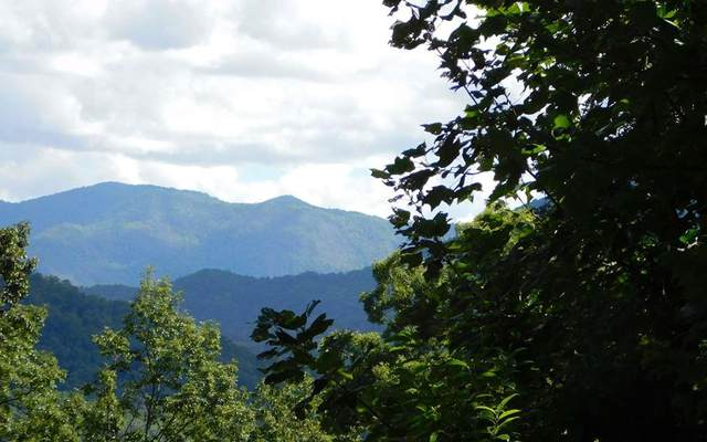 Lot 5J Ashe Branch View, HAYESVILLE, NC 28904 (MLS #130324) :: Old Town Brokers