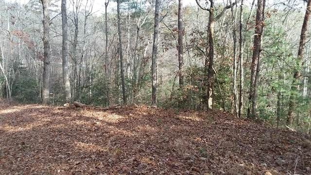Lot 14 Hickory Hill Lane, MURPHY, NC 28906 (MLS #130563) :: Old Town Brokers