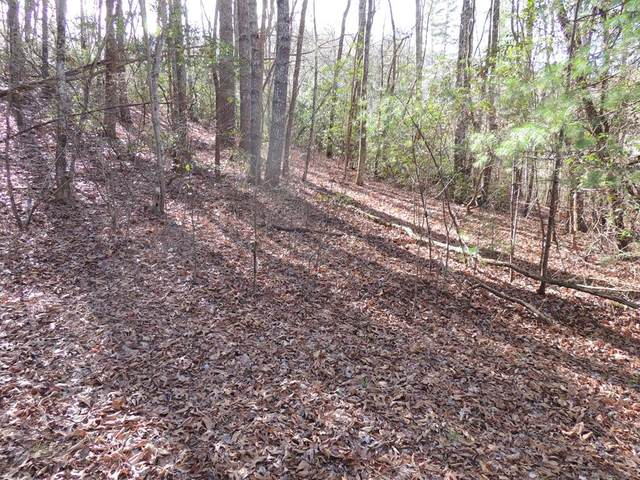 00 Deer Run Road, ROBBINSVILLE, NC 28771 (MLS #130605) :: Old Town Brokers
