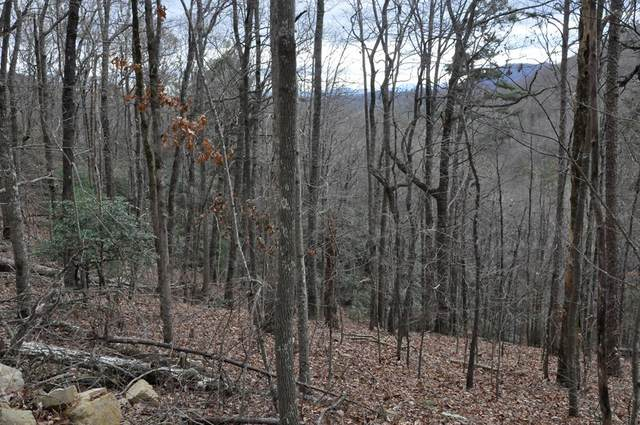Lot 16 Copper Leaf Drive, MURPHY, NC 28906 (MLS #130634) :: Old Town Brokers