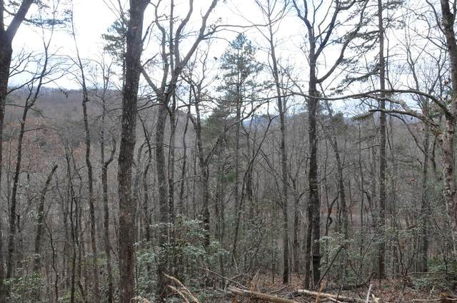 Lot 18 Copper Leaf Drive, MURPHY, NC 28906 (MLS #130636) :: Old Town Brokers