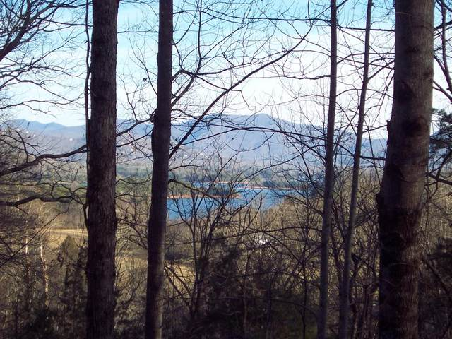 Lot #21 Tahlequah Ridge, HAYESVILLE, NC 28904 (MLS #130688) :: Old Town Brokers