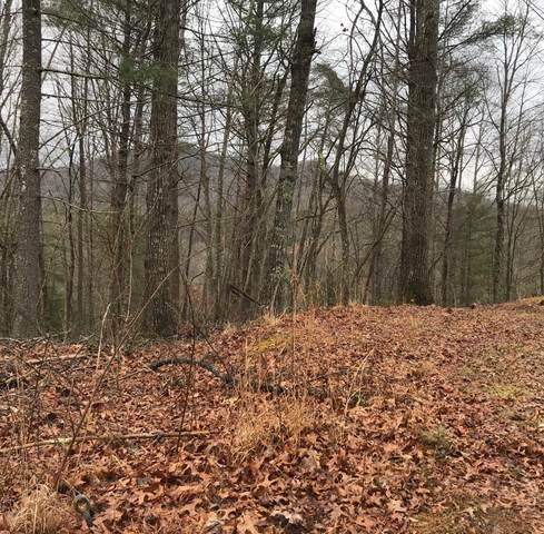 00 Dogwood Trail, ROBBINSVILLE, NC 28771 (MLS #130930) :: Old Town Brokers