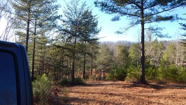 Lot 38 Walk Trail, MURPHY, NC 28906 (MLS #130963) :: Old Town Brokers