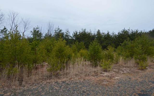 Lot 2 Preserve At Beach Mtn, HAYESVILLE, NC 28904 (MLS #131032) :: Old Town Brokers
