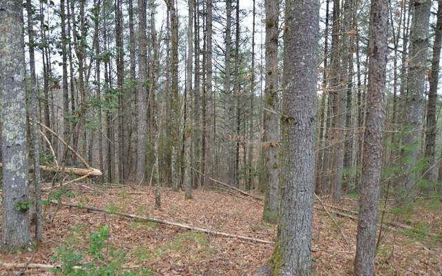 Lot 5 Shady Oaks-Mouse Creek Trail, MURPHY, NC 28906 (MLS #131037) :: Old Town Brokers